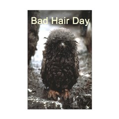 Bad Hair Day Posters
