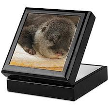 Sleeping Otter Keepsake Box