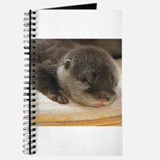 Sleeping Otter Journal