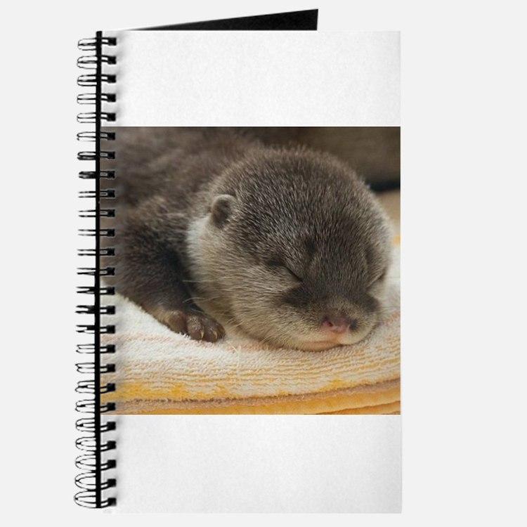 Sleeping Otter Journal