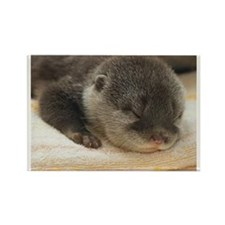 Sleeping Otter Rectangle Magnet