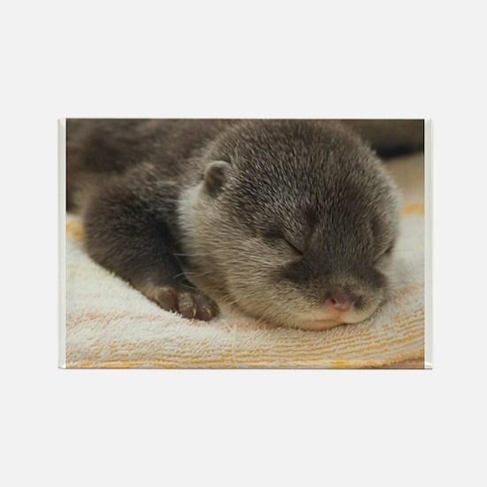 Sleeping Otter Rectangle Magnet