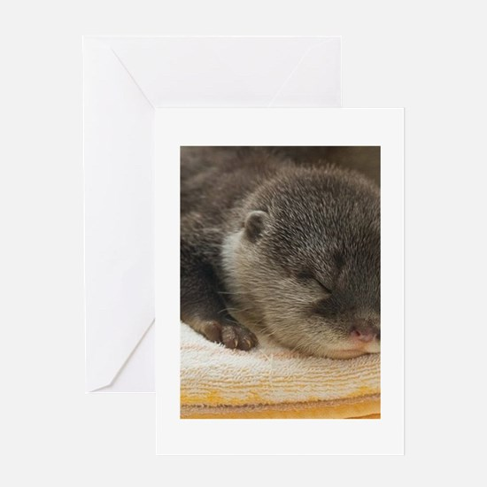 Sleeping Otter Greeting Card