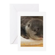 Sleeping Otter Greeting Cards (Pk of 20)