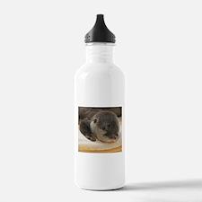 Sleeping Otter Water Bottle