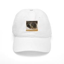 Sleeping Otter Baseball Cap