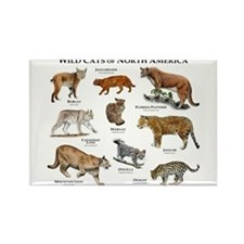 Wildcats of North America Rectangle Magnet