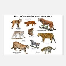 Wildcats of North America Postcards (Package of 8)