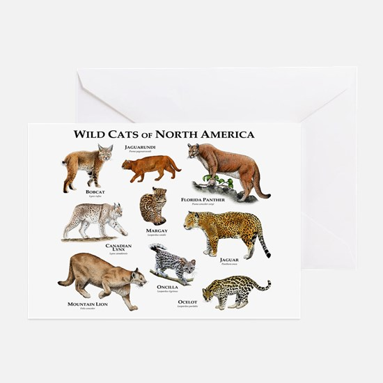 Wildcats of North America Greeting Cards (Pk of 10