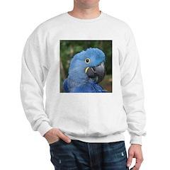 Hyacinth JM Csaky Sweatshirt