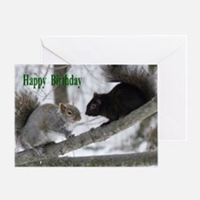 Black and gray squirrels. Greeting Card