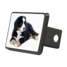 bernese-mountain-puppy_ Hitch Cover