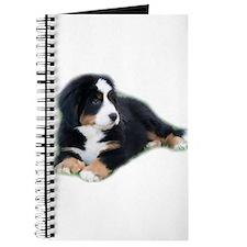 bernese-mountain-puppy_ Journal