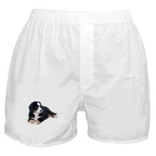 bernese-mountain-puppy_ Boxer Shorts
