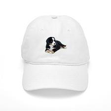 bernese-mountain-puppy_ Baseball Cap