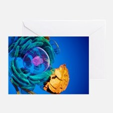 Animal cell, artwork - Greeting Cards (Pk of 20)