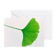 Leaf of Ginkgo biloba - Greeting Cards (Pk of 20)