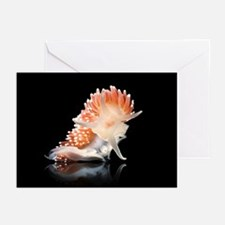 Nudibranch - Greeting Cards (Pk of 20)