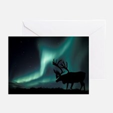 Aurora borealis and caribou - Greeting Cards (Pk o