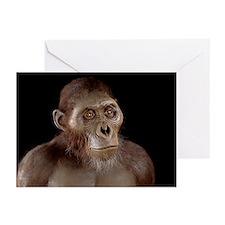 Australopithecus afarensis - Greeting Cards (Pk of
