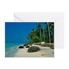 Coastal erosion - Greeting Cards (Pk of 20)