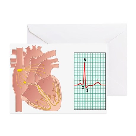 Electrical conduction of the heart - Greeting Card