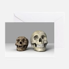 Homo floresiensis skull - Greeting Cards (Pk of 20