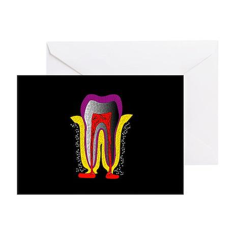 Human tooth anatomy, artwork - Greeting Cards (Pk