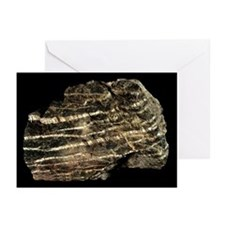 Serpentinite metamorphic rock - Greeting Cards (Pk