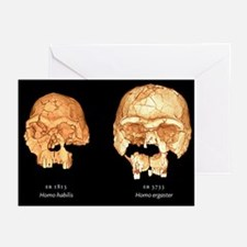 Hominid skulls, 3D computer images - Greeting Card