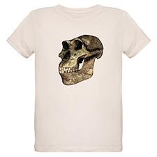 Australopithecus afarensis, artwork - T-Shirt