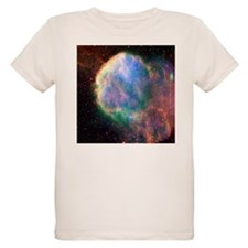 Supernova remnant IC 443, composite image - Organi