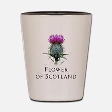 Cute Scotland Shot Glass