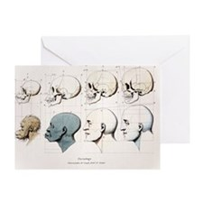 1760a Petrus Camper facial angle eugenics - Greeti