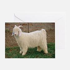 Angora goat - Greeting Card