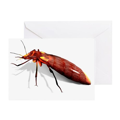 Bed bug, artwork - Greeting Card
