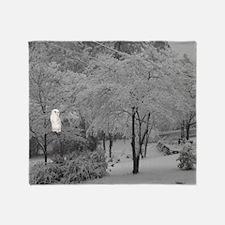 Snowbird Throw