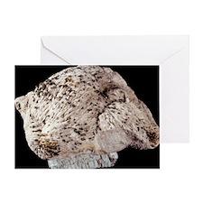 Baryte mineral sample - Greeting Card