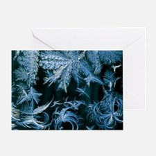 Frost patterns - Greeting Card