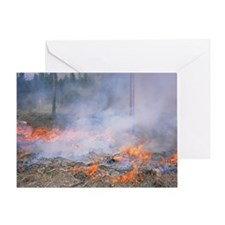 Forest fire - Greeting Card