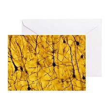 Cerebral cortex nerve cells - Greeting Card