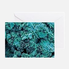 Gypsum crystals, SEM - Greeting Card
