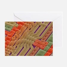 EPROM silicon chip, SEM - Greeting Card