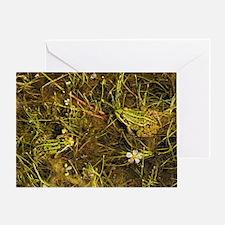 European edible frogs - Greeting Card