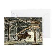 Horse gin, illustration - Greeting Card