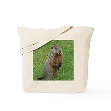 Groundhog eating Tote Bag