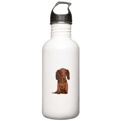 Painted Red Doxie Stainless Water Bottle 1.0L