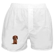 Painted Red Doxie Boxer Shorts