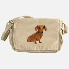 Painted Red Doxie Smooth Hair Messenger Bag