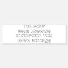 You Know Nothing-Socrates Bumper Bumper Bumper Sticker